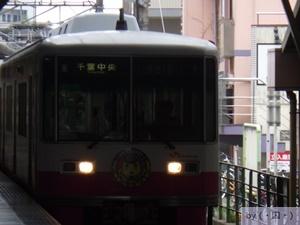 mini_RIMG2590.JPG