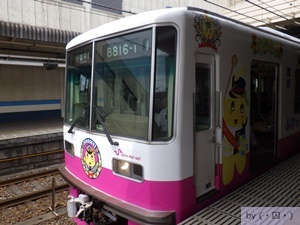mini_RIMG2591.JPG